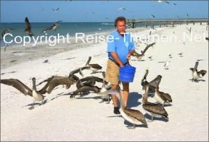 seabirdsanctuary5copyrightkarstenthiloraabkopi_470