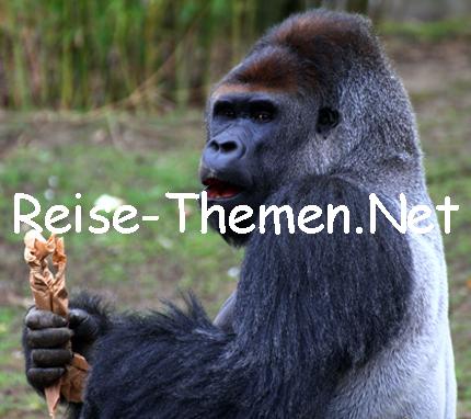 Zoo Krefeld - Copyright Karsten-Thilo Raab (52)