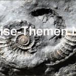 185 Millionen Jahre auf 160 Kilometern