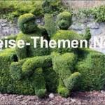 Buchsbaumzauber in den Ardennen