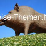 Riesenschweinerei in den Ardennen